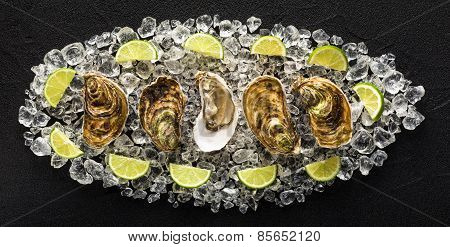 Fresh Oysters On A Black Stone Table Top View