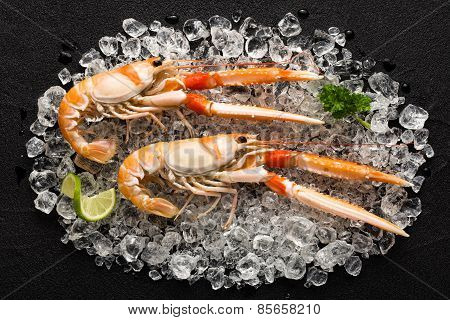 Fresh Scampi Shrimp On Ice On A Black Stone Table Top View