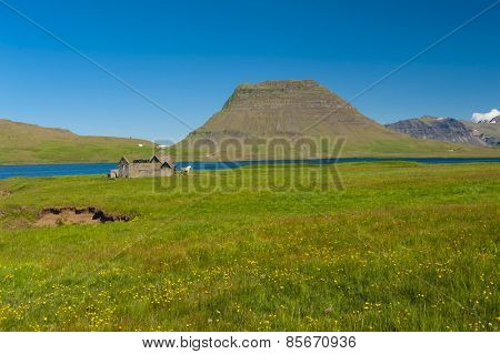 Old abandoned barn and a horse standing in front of it. Located in a wild Icelandic landscape in the valley under the mountains in the fjord