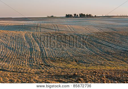 Plowed Field Landscape