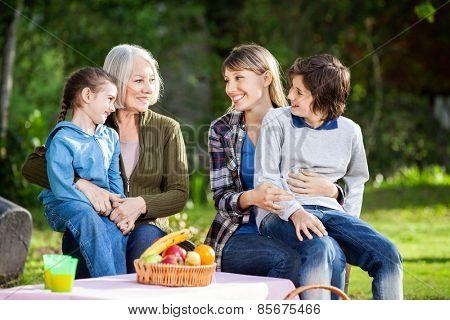 Happy multi generation family enjoying picnic in park