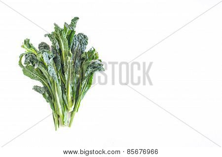 Bunch Of Kale On White Background With Empty Copyspace