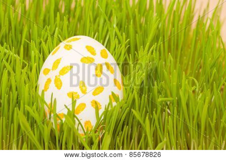 colored easter egg in grass