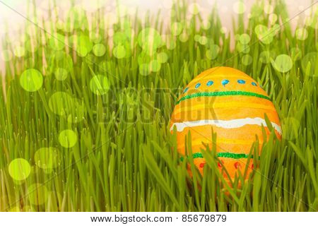 colored easter egg in grass with bokeh