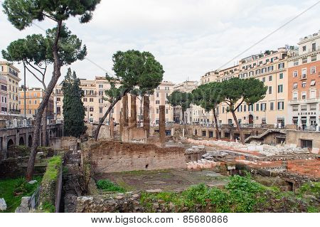 Rome, Italy - January 24, 2010: Largo Di Torre Argentina