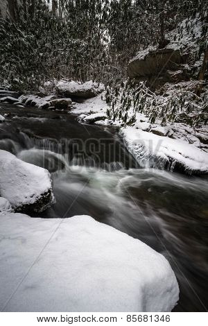 Smoky Mountain Winter Stream