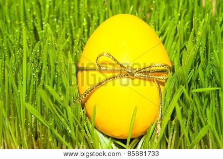 yellow egg with bow knot on grass background