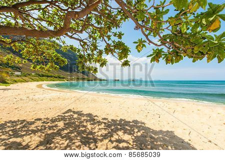 Hawaiian Beach With Sand And Mountain Background