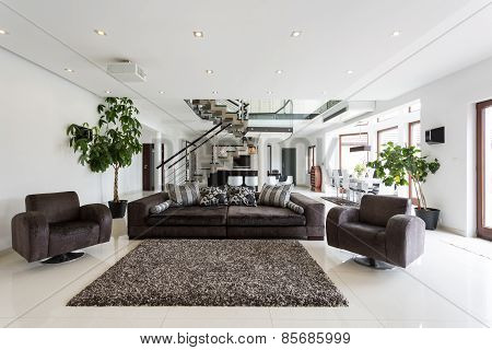Modern Front Room