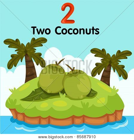 Illustrator of number two coconuts