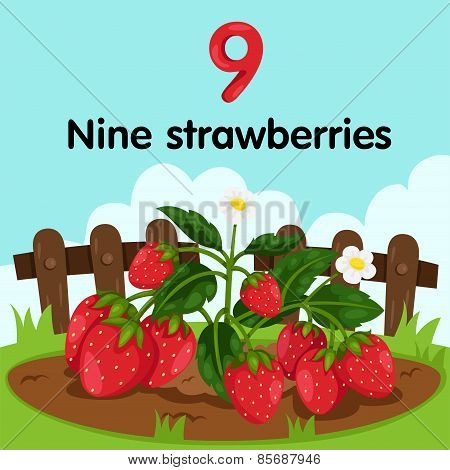 Illustrator of number nine strawberries
