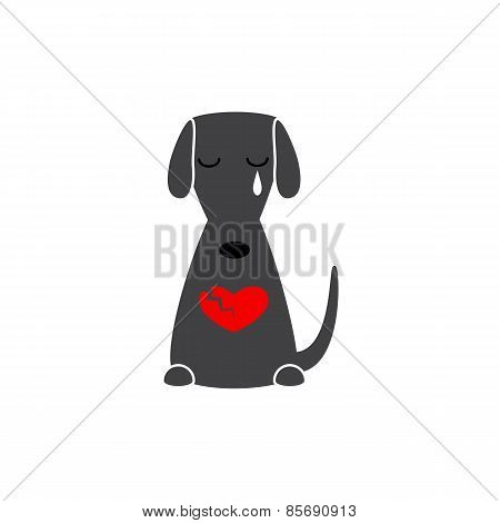 Dog With Broken Heart
