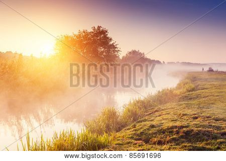 Fantastic foggy river with fresh green grass in the sunlight. Sun beams through tree. Dramatic colorful scenery. Seret river, Ternopil. Ukraine, Europe. Beauty world. Retro style filter.