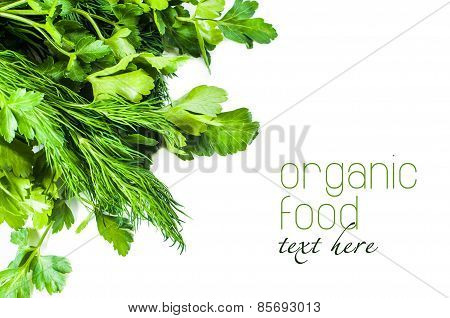 dill and parsley Coleslaw on white background. isolated
