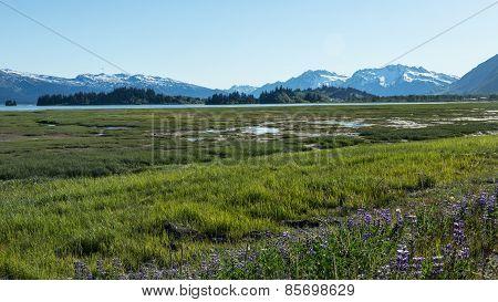 Approaching Valdez