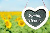 pic of spring break  - Spring break concept - JPG