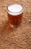 picture of malt  - Mug of light beer standing on malted barley grains - JPG