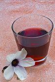 picture of hibiscus  - Hibiscus tea  - JPG