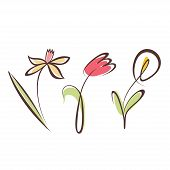 picture of outline  - outlined hand drawn flower collection design elements set - JPG