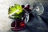 pic of merlot  - Glass of red wine on dark background - JPG