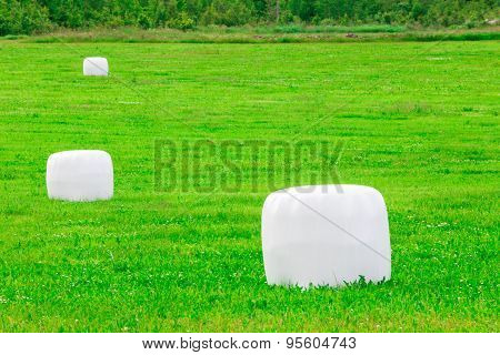Grass In Plastic Silage Balls