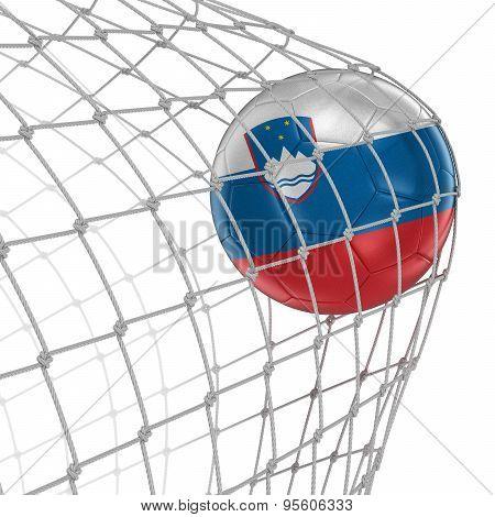 Slovene soccerball in net
