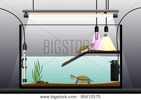 Aquaterrarium.