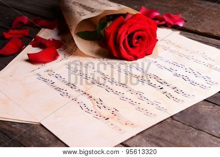 Beautiful rose wrapped on music sheets on wooden table, closeup