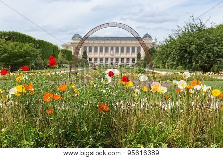 City Park Jardin Des Plants With Natural History Museum In Paris