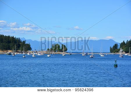 Harbor of Nanaimo