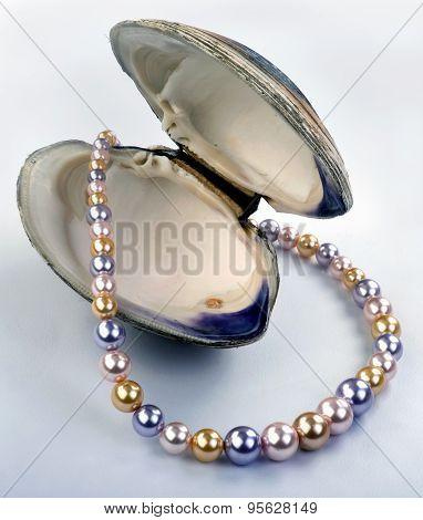 Multi Colored Pearls.