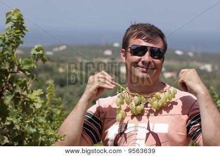 Vine As Pendant