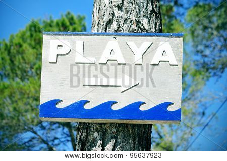 closeup of a wooden sign attached to a pine tree with the text playa, beach written in spanish, in Ibiza Island, Spain