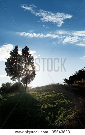 Photographer Making Photo Of Amazing Sunset Light