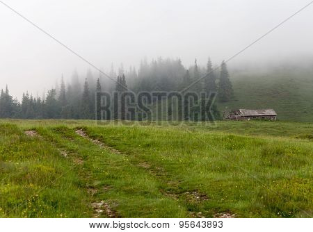 Amazing Mountain Landscape With Fog