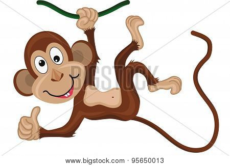 Monkey hanging on a branch.Thumbs up.
