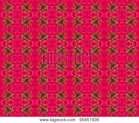 Zinnias Flower Seamless Pattern Background