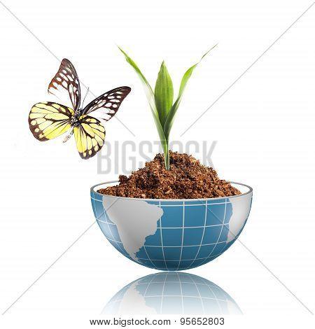 Plant Growing In Side Digital Glob
