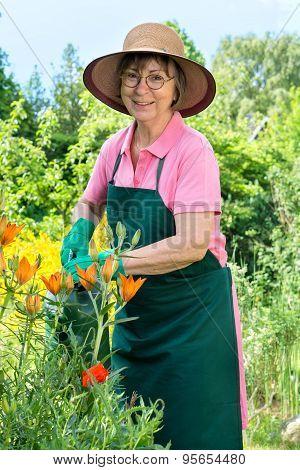 Happy Female Gardener Watering Her Flowers