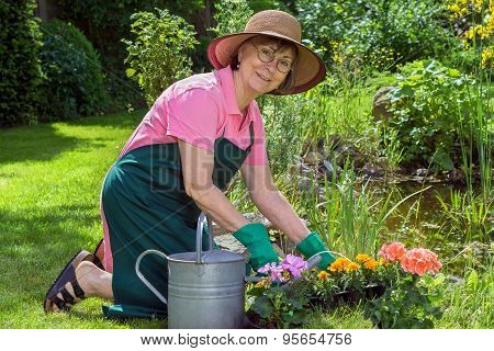 Middle-aged Woman Working In Her Garden