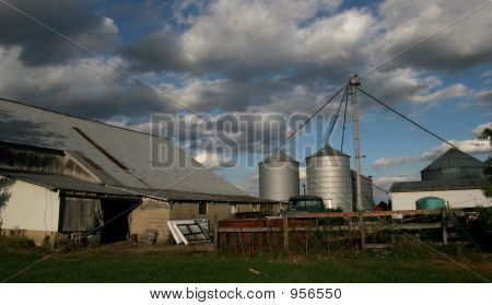 Working Farm