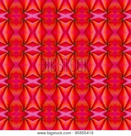 Pink Frangipani Seamless Pattern Background
