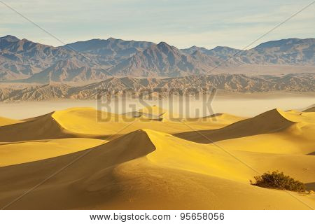 Desert, Death Valley National Park