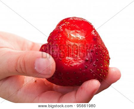 Bitten strawberry in hand