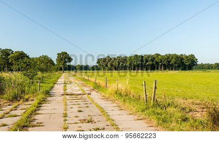 Country Road Made Of Concrete Slabs Covered With Grass