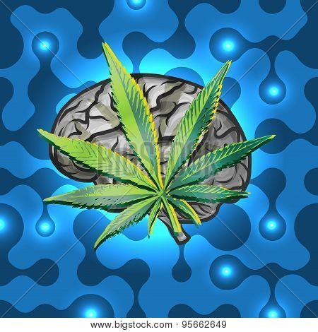 Rasta brain