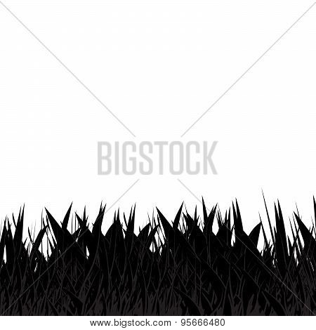 Black and grey grass abstract natural background