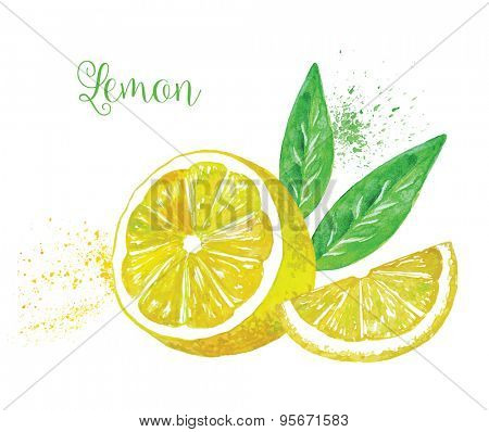Watercolor Vector Lemon with a Leaf, Isolated on White Background.