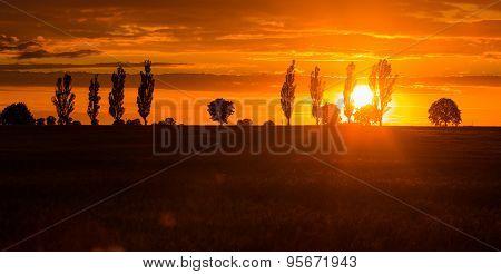 Beautiful Vibrant Sunset Over Field