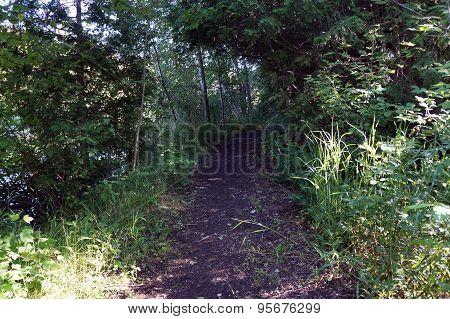 Path in Spring Lake Park